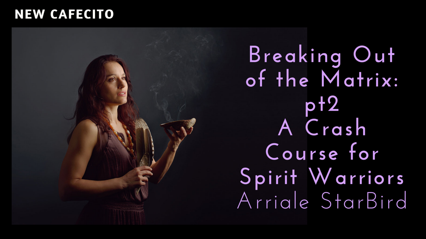 Breaking Out of the Matrix pt2 – Spirit Warrior Crash Course: Arriale Starbird